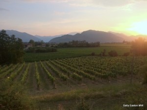 Sunrise in Franciacorta