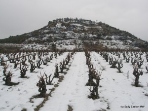 Corbières, pretty in rare snow (Jan 2010)