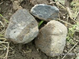 Pfalz basalt