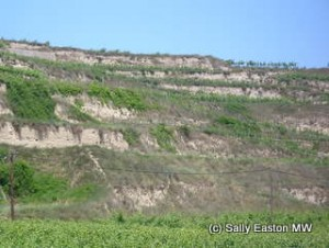 Loess terraces