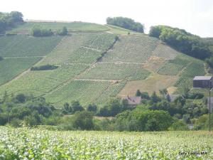 Cul de Beaujeu