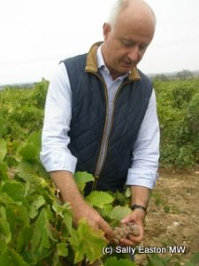 Eric Fabre in bourboulenc vineyard