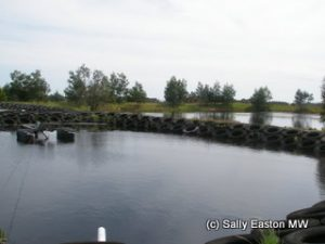 Elgo Estate water treatment lagoons