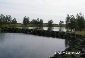 Winery water treatment lagoons