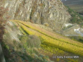 High Altitude Viticulture WineWisdom - What is my altitude above sea level